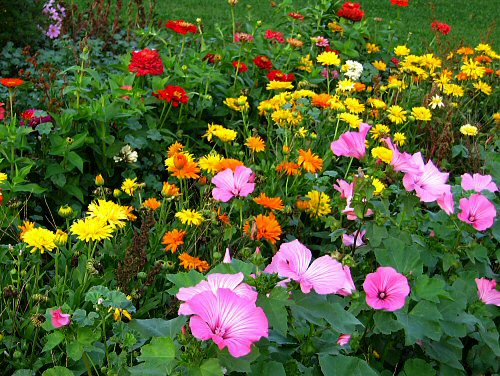 Gardening With Flowers Is Like Trying To Control A Picture In Which Most Of  The Components Change Their Appearance Daily. Making A Flower Garden Is Not  Just ...