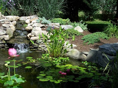 The Normal Method Of Integrating A Waterfall Is By Building A Rock Garden  As A Backdrop To The Pool. When Done Tastefully, This Can Be Very  Successful, ...