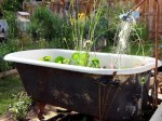 Garden Water Features – Planning and Design