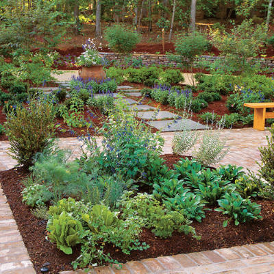 Growing Herbs Salads And Vegetables