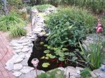 Garden Water Features – Problem Solving