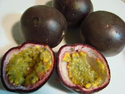 Growing Tropical Fruits - passionfruits