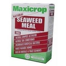 seaweed meal - types of natural garden fertilizers