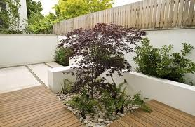 Wood Decking Ideas - Plants and Water Features
