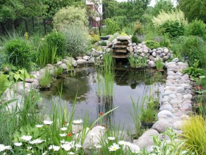 Building and Positioning a Garden Water Feature