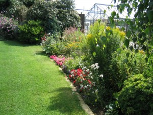 wildlife garden - importance of garden habitats
