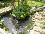 Designing Water Features for Success