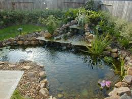 Water Feature Planting Ideas - Informal Planting