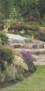Edging Plants and Rock Garden Plants