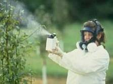 chemical sprays to protect your fruit trees