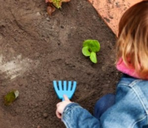 gardens for young families