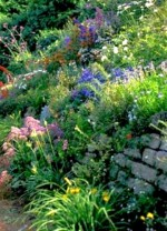 Making a New Garden and Working With What You've Got
