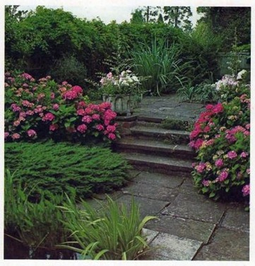 steps for the sloping garden