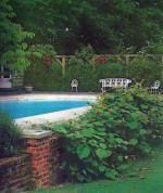 Garden Ponds, Pools and Swimming Pools