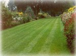 Lawn Maintenance Jobs in Early Spring