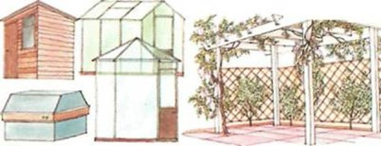 shed and pergola