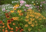 Planting Annuals with Perennials