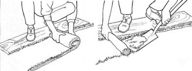 laying turf - stand on a board to prevent soil compaction