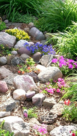 Starting a Rock Garden - The Gardening Bible on Backyard Rocks  id=27500